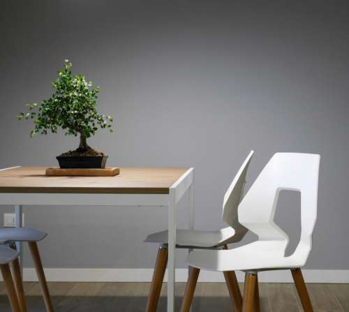 interior design table chairs furniture