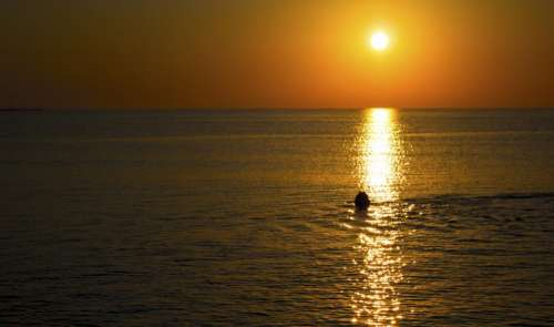 sea ocean water sunset sunrise