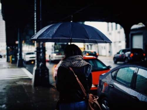 people woman rain umbrella car