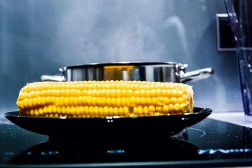corn corn on the cob stove oven pot