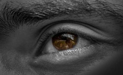 eyes eyeball eyebrow pupil