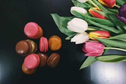 macaroons dessert food tulips flowers