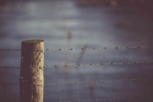 barbed wire fence field farm