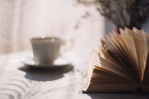 book novel reading tea cup