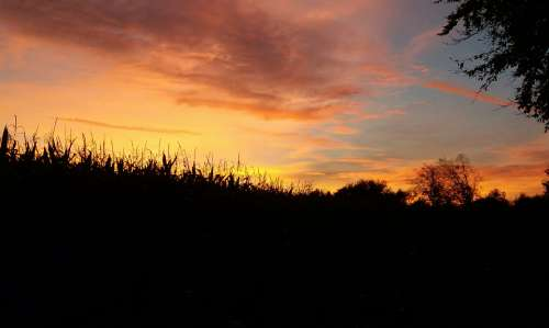 Grevenbrück sunrise sun silhouette outdoors
