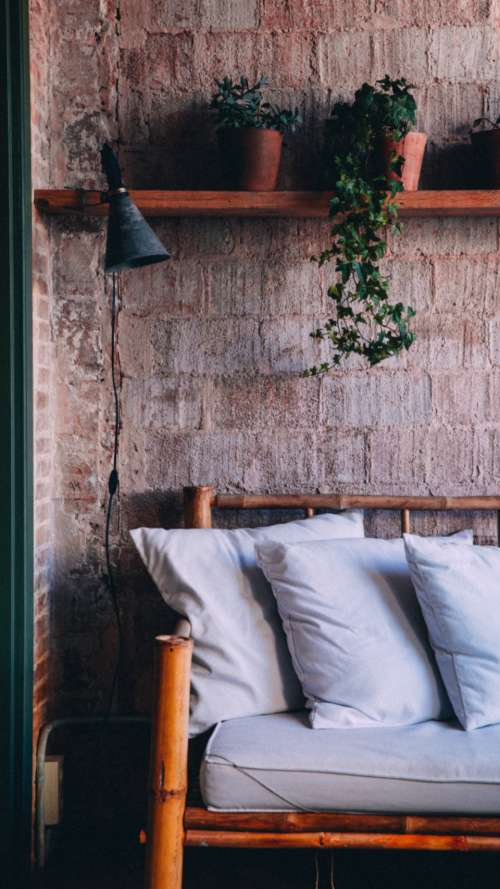 rustic interior couch plants light