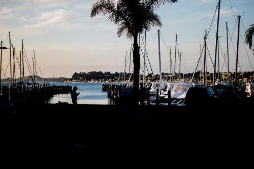 dark yacht boat tree people