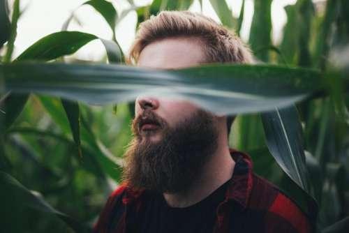 people man green plants field