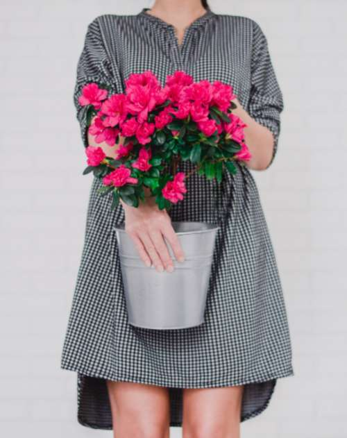 woman pink flowers fashion dress