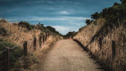 path grassland highland nature adventure