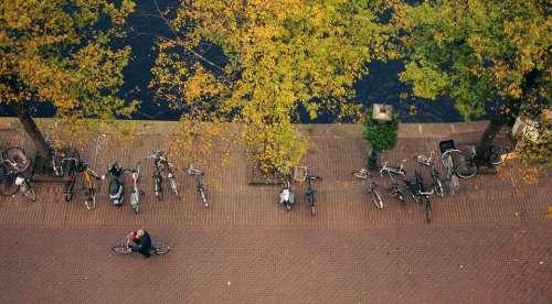 bikes bicycles guy man people
