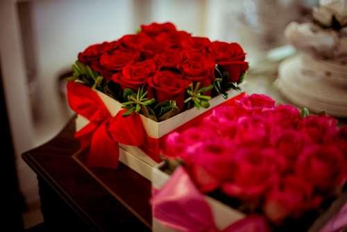 box red roses romantic love