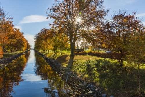 nature river trees plants autumn