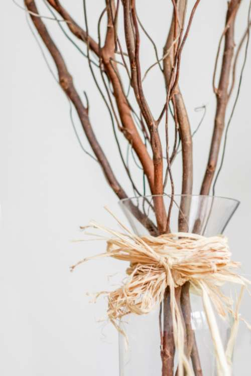 decorative vase branches minimal clean