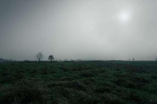green grass highland landscape horizon