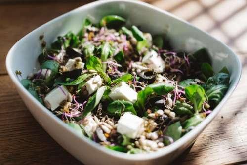 vegetable salad food health green