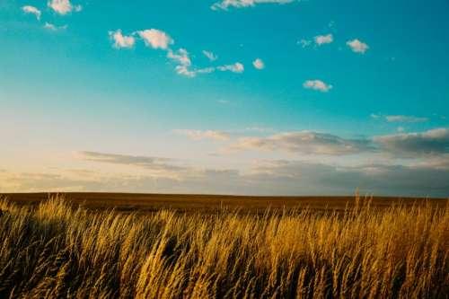 landscape field blue sky clouds