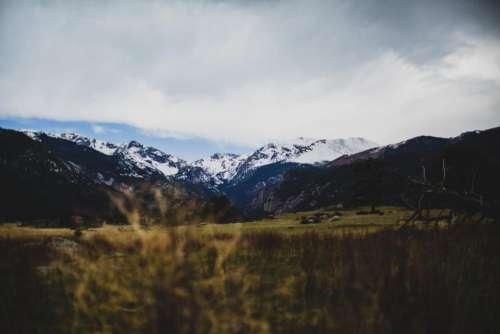 green grass nature mountain highland