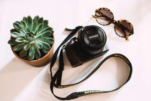 black nikon camera sunglasses house plant