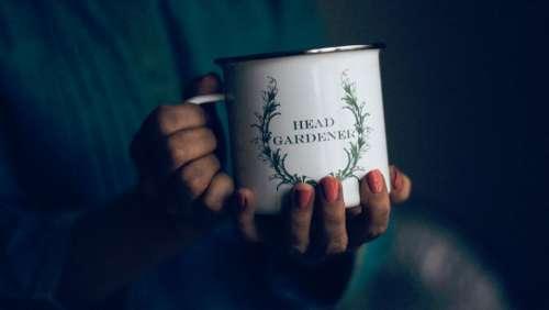 mug people nails woman hands