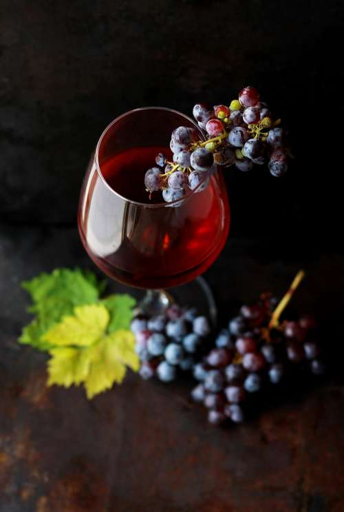 food fruit grapes wine alcohol