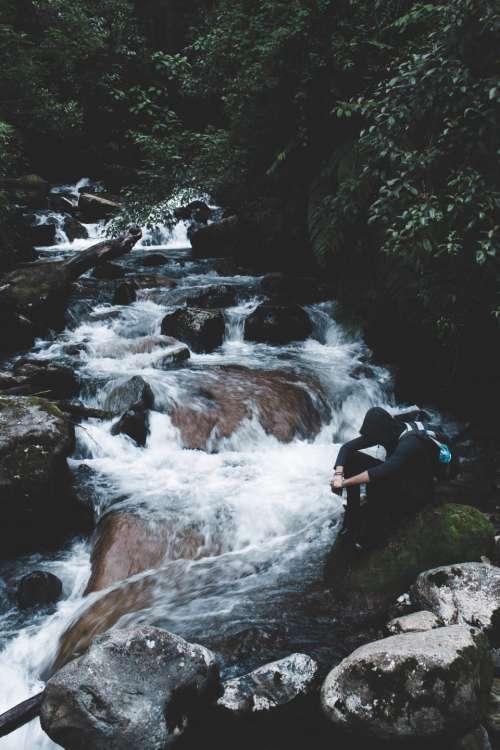 river stream water rocks green