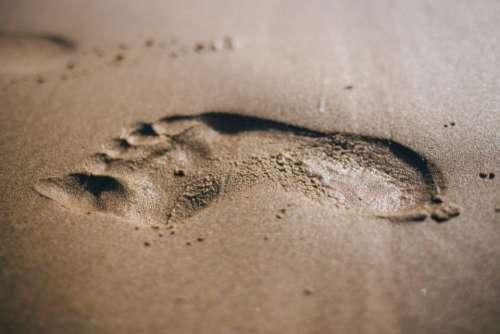 footprint beach sand summer shore