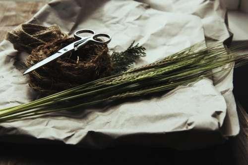 scissors rope wheat objects