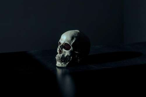 dark skull bone table reflection