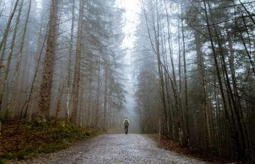 people man alone walking travel