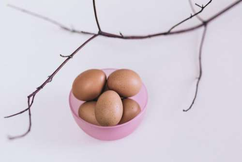 eggs pink container stem bowl