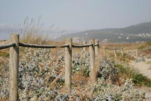 wood fence green grass landscape