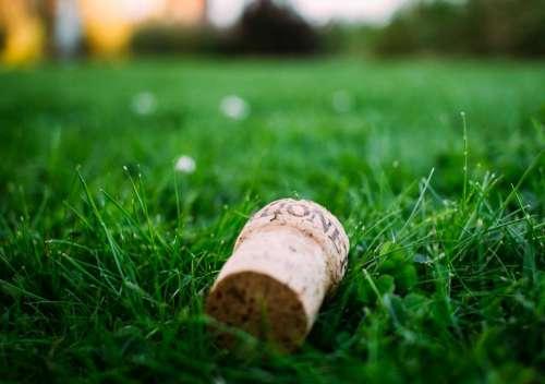 green grass lawn field corks