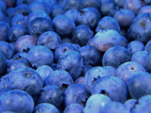 blueberries blueberry fruits healthy food