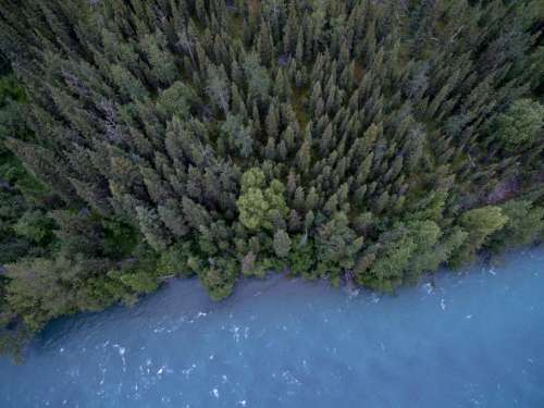 lake river water trees forest