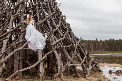 wood tree people woman girl