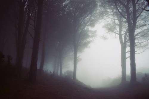 mountain highland foggy landscape nature