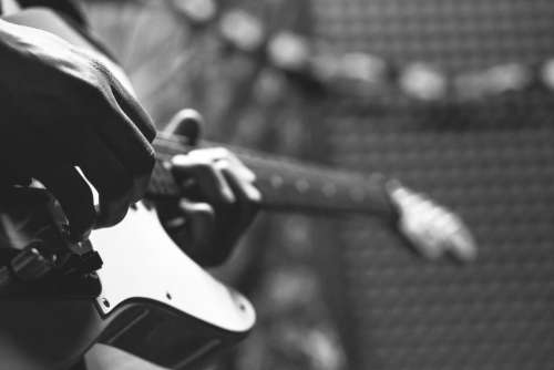 crafts hobby music instrument guitar