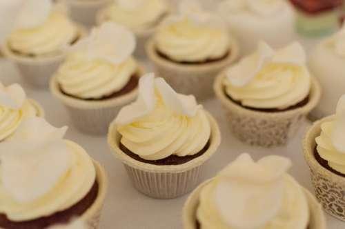 food dessert sweets cupcakes baking