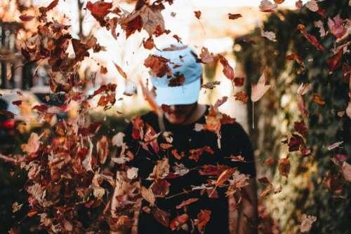 people man tree leaves fall