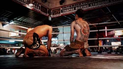boxing ring men guys people