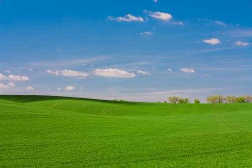 green grass grassland mountain landscape