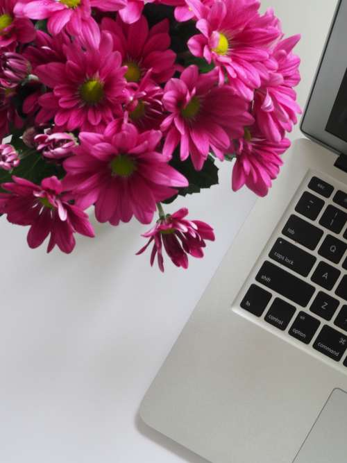 mac pink flowers white table