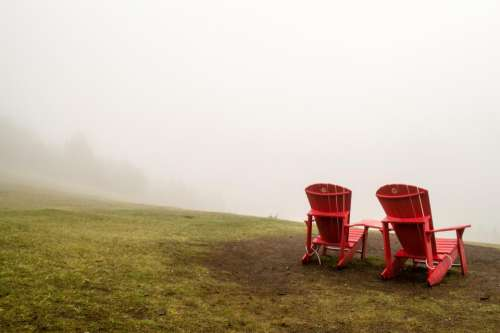 nature grass fog chairs red