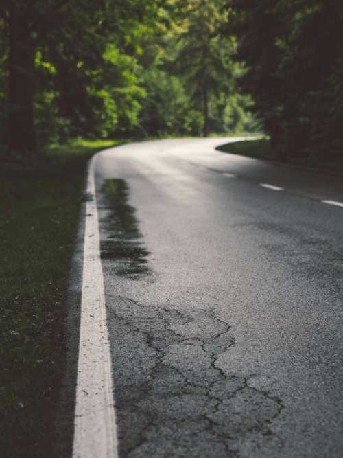 rural road wet rain puddle