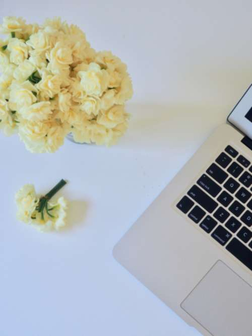 macbook white flowers nature table