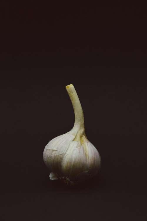 onion food