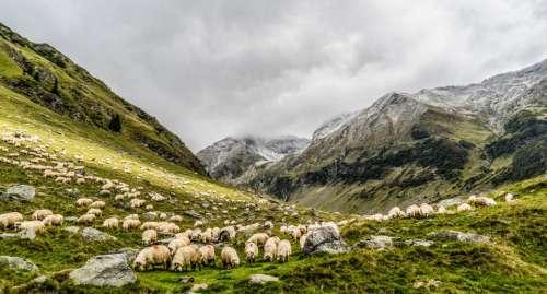 mountain valley highland field green