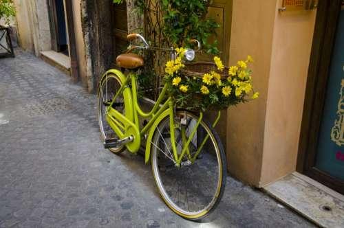 bike bicycle flower basket outside