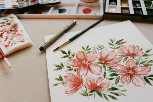 flower pink petal bloom garden